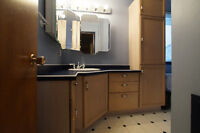 Bathroom cabinets and counter