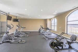 1 BDRM PENTHOUSE WITH DEN- North london London Ontario image 8