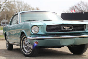 1966 Ford Mustang Coupe - Price Reduced, Must Go!