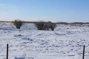 79 Acres North of Asquith