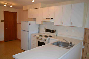 Spacious and modern 1 Brd Legal Apartment in Courtice
