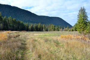 Great Building Lot on South Lakeside Williams Lake Cariboo Area image 3