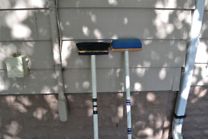 GOLDLINE Curling Broom + Blue Brush ~ $30 takes the pair (FIRM)
