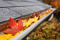 Fall Clean-ups, Tree Removal, Sodding and Eavestrough Cleaning!