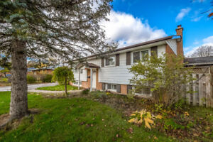 Charming Detached Bungalow with Pool in South-End Guelph
