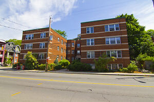 SPECIAL RENT RATE! Updated 3 BDRM in Sandy Hill!