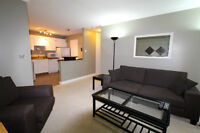FURNISHED 1 BEDROOM CONDO - Feb 1st - GREAT LOCATION