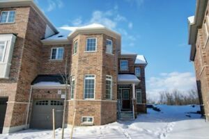 Brand New 4 Bedroom Townhome  Markham Meadows - 2 Stroey -Ravine