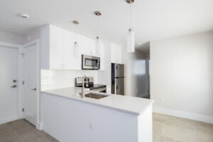 Basement Suite in The Heights