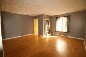 Great Starter Home With Off Street Parking! St. John's Newfoundland image 5