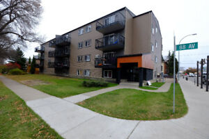 Renovated Bachelor with D/W in Old Strathcona