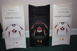 NHL Team Canada Mini Jersey, Full Set with stand(packaged)