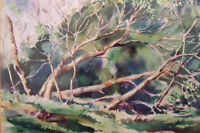 Duncalfe Water Color  22 inches by 18 inches