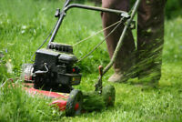 Looking for someone to Help Cut Grass TODAY*$90cash*