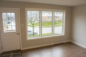 Gorgeous Home for 1st time buyers or investors Kitchener / Waterloo Kitchener Area image 3