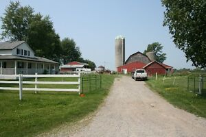 50 Acre farm with great curb appeal, 1st mortgage available
