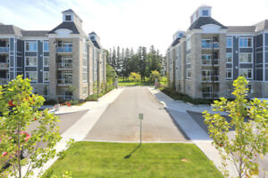 Stunning Condo Steps to the Lake! OPEN HOUSE SAT+SUN 2-4!