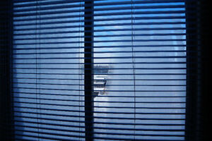 Blinds for the window