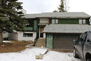 For Sale in Tumbler Ridge - 107 Willow Drive