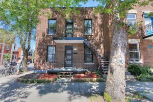 575 000 $ - Duplex en double occupation - Petite Patrie
