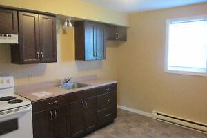 Modern One Bedroom Apartment in Antigonish