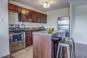 Large, newly renovated 2 bed available November 1 - $1,449.00+