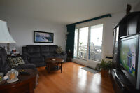 UPSCALE FURNISHED CONDO FOR 6 MONTHS