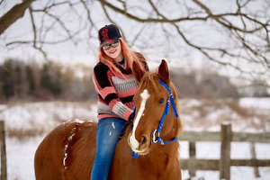 March break horse camp!! Ages 8 and up, london