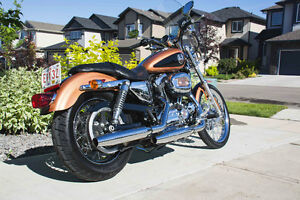 2008 Harley Sportster 1200 105th Anniversary Special Strathcona County Edmonton Area image 4