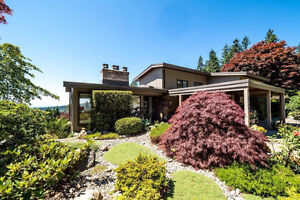 Beautifully Maintained 4 Bedroom Canyon Heights House