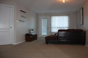 Cleaned 2 bedrooms and 2 bathrooms to rent at South Terwillegar