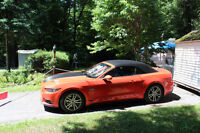 2015 Ford Mustang GT 5.0 Cabriolet