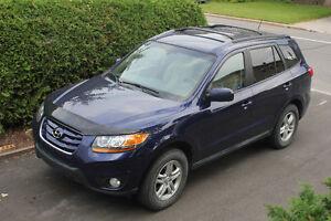 2010 Hyundai Santa Fe Tissus VUS