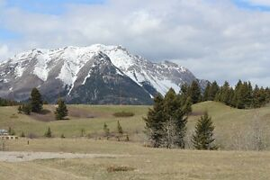 4.57 ACRES IN CROWSNEST PASS