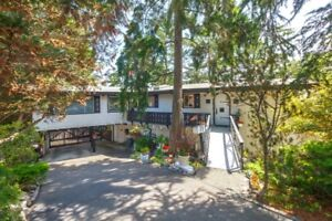 Well Cared for Rancher on a Private .31 Acre Lot