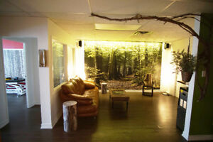 Psychotherapy room for rent