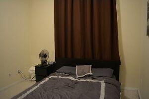 2 Bedroom 1 bath condo - nearly 1000 sq/ft. Edmonton Edmonton Area image 12
