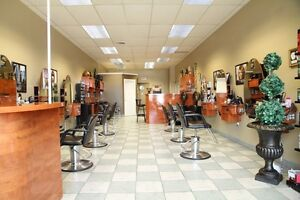 Entire salon furniture for sale
