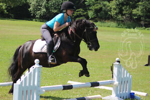 ENGLISH RIDING LESSONS, SUMMER CAMP