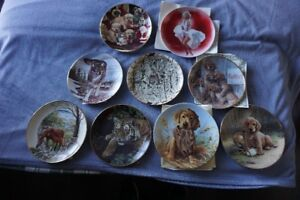 Collector dishes