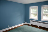 Special Promotion ! 2 Experienced Painters - Prices included