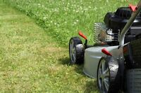 A man with a mower