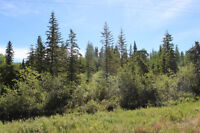 FOUR TWO ACRE LOTS AT LAC DES ISLES