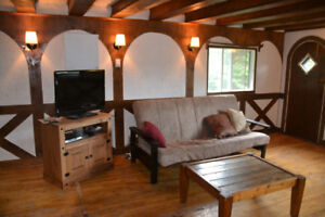 11 person - March Break Ski Chalet  LAST minute DISCOUNT