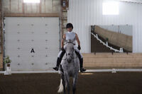 English Riding Instructor - Facility Assistant Manager