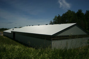Indoor and Outdoor Board available minutes from Universities. Kitchener / Waterloo Kitchener Area image 2