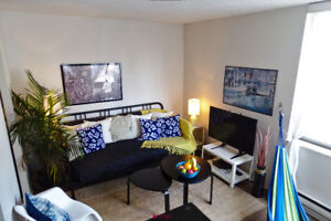 Furnished Sublet Plateau/Mcgill *january semester