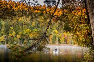 Terrain à vendre au Lac Jackson – LA FRAYÈRE, bord de l'eau