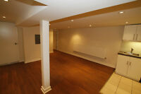 Perfect 1 bedroom apartment In very bright basement. Cats welcom