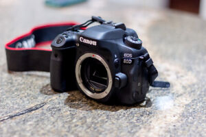 Canon 80D body and lenses